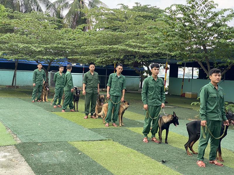 Trường huấn luyện chó cảnh, chó nghiệp vụ tốt nhất | Trung Đức